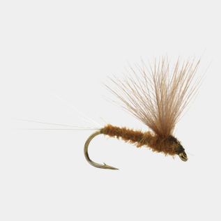 RUNES CDC NOHACKLE OLIVE - 14